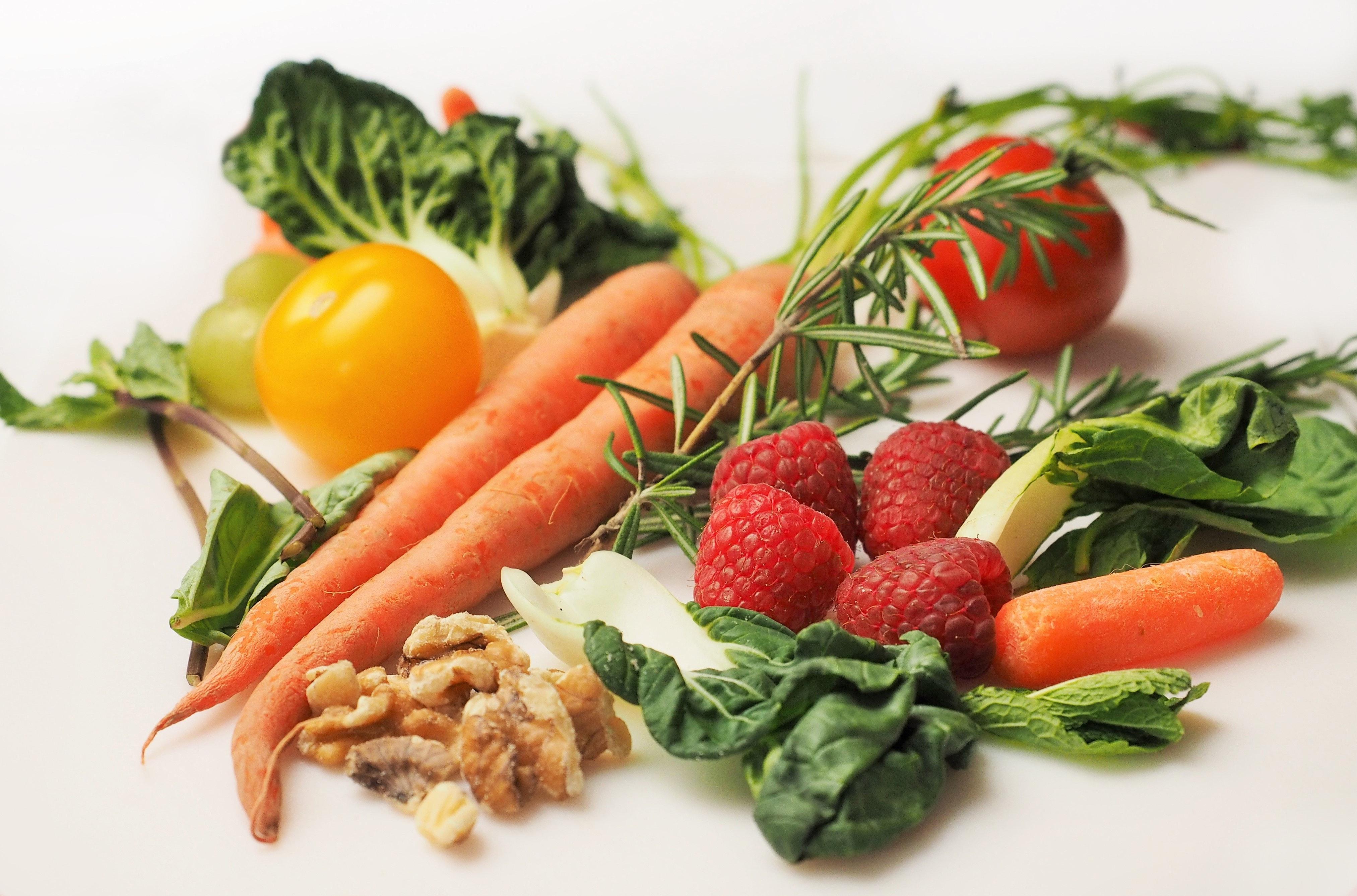 1- taller de nutrición